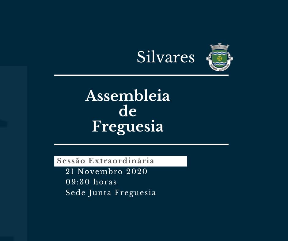 Assembleia de Freguesia de Silvares | Sessão Extraordinária 21/11/2020