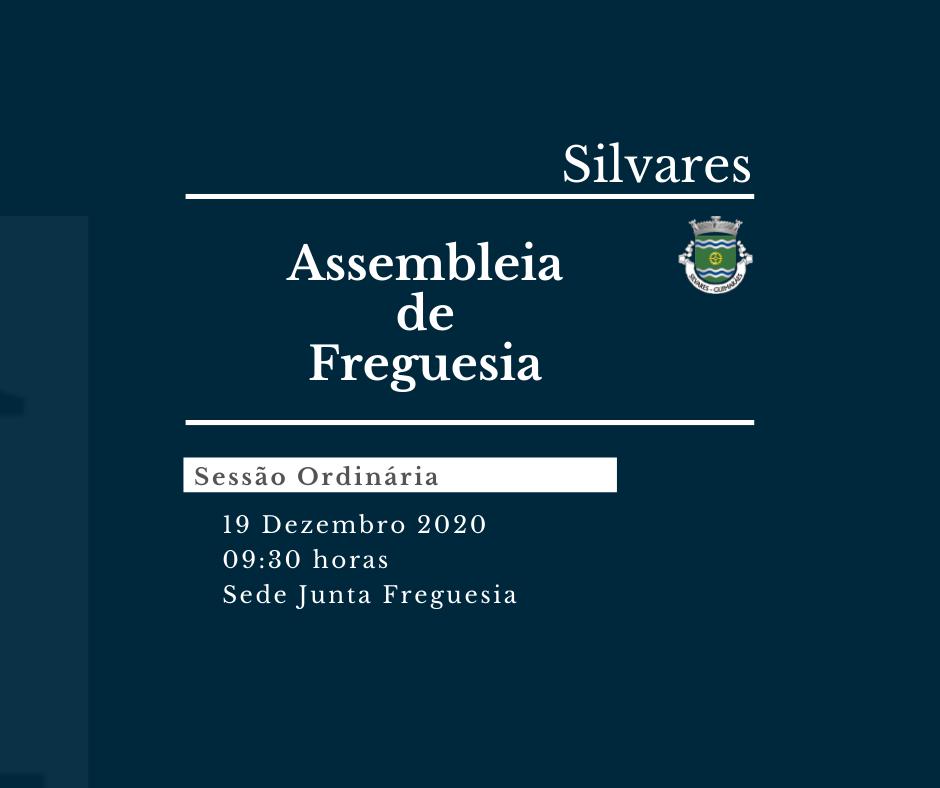 Assembleia de Freguesia de Silvares | Sessão Ordinária 19/12/2020